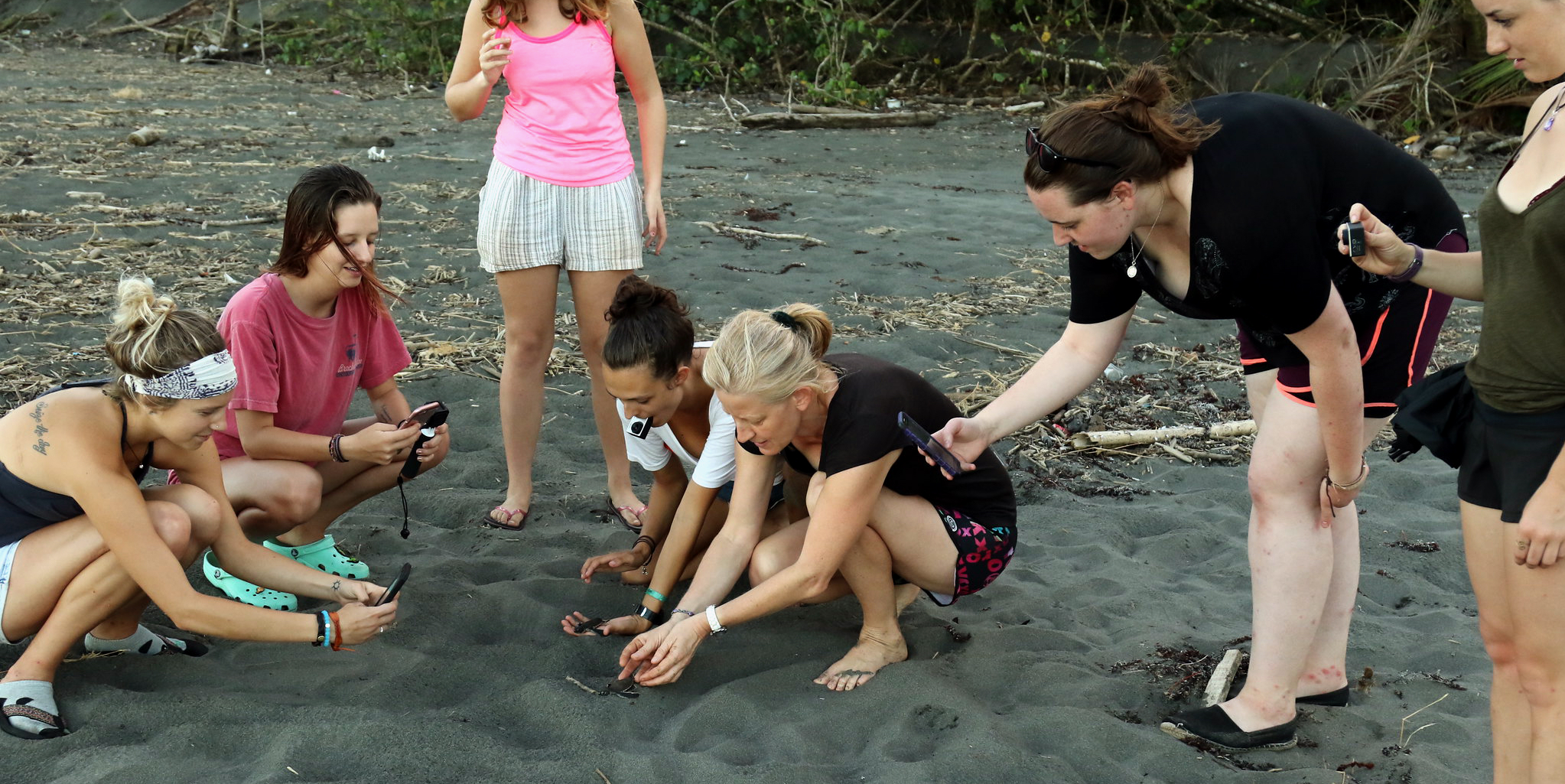 Volunteers in Seychelles are demonstrating the effects of the digital diet and the negative effects of social media by looking at baby turtles through their smartphones instead of being in the moment.