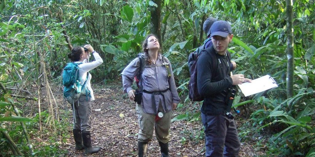 Safeguard A Jaguar Stronghold In Costa Rica