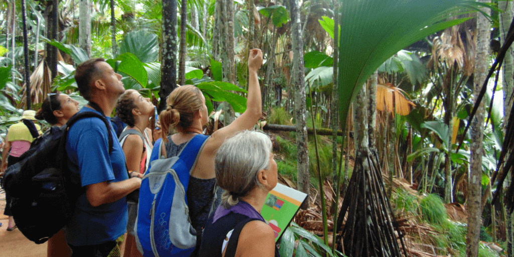 Use your study abroad gap year to learn more about plants and animals on a wildlife conservation volunteer program