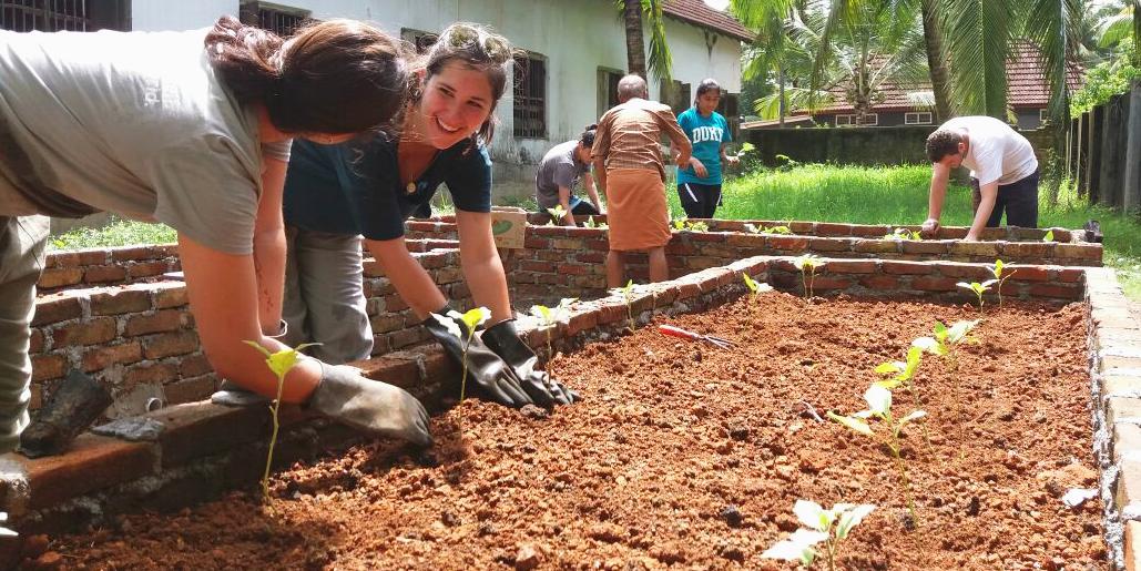 GVI volunteers contributing to food security on a community development volunteer program.