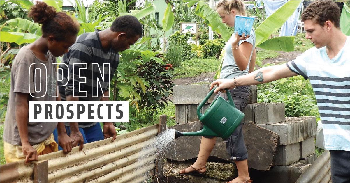 Volunteers working in a garden.
