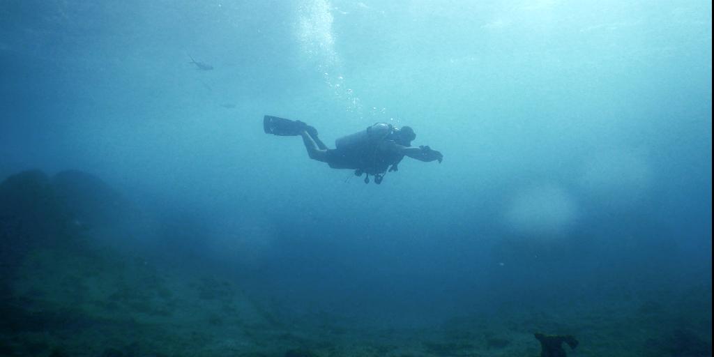 fiji diving