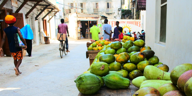 volunteer opportunities in tanzania