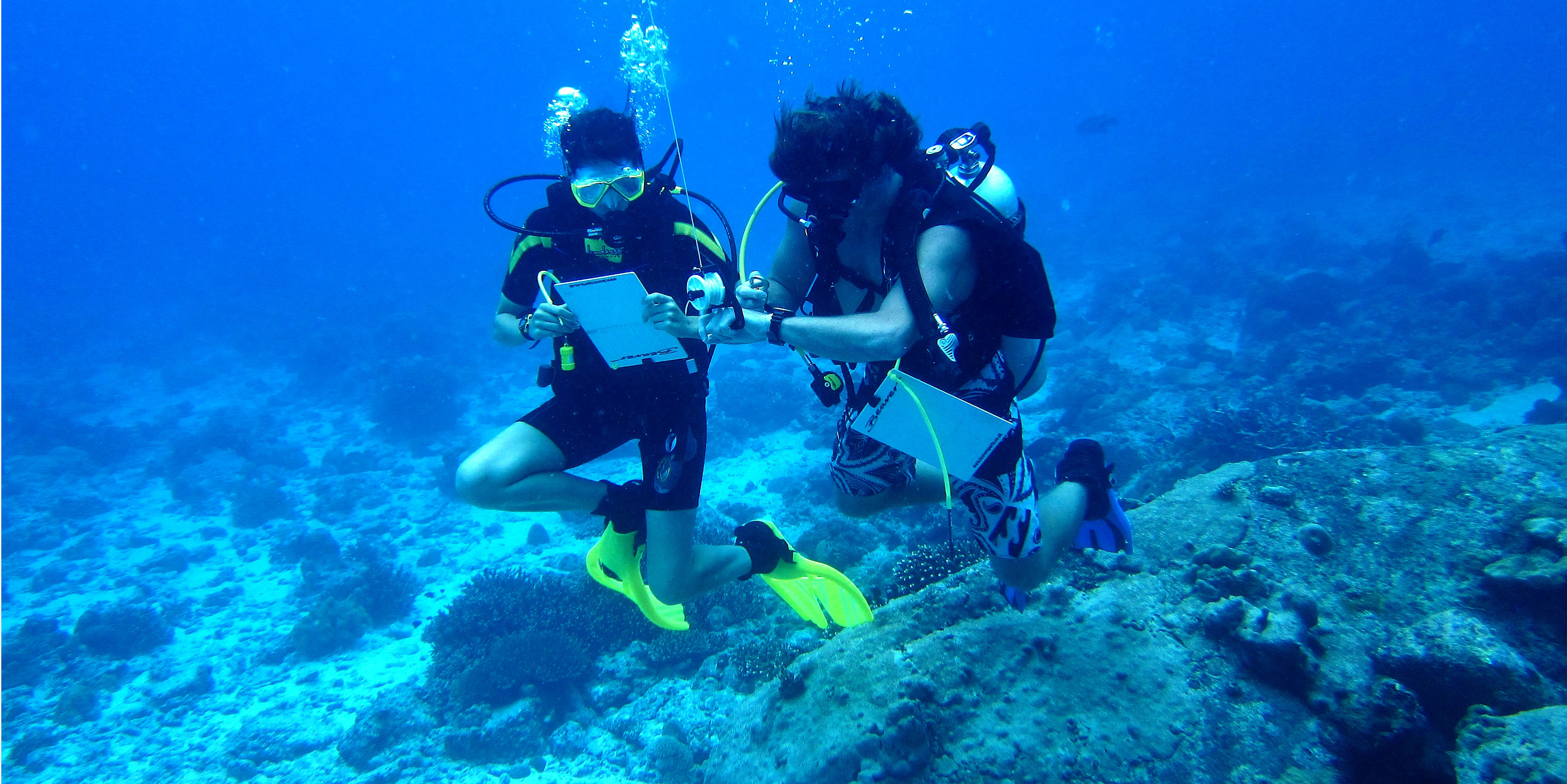 GVI participants help to gather scientific data in Mahe, Seychelles. After becoming PADI pros, these divers could help further research in marine conservation.