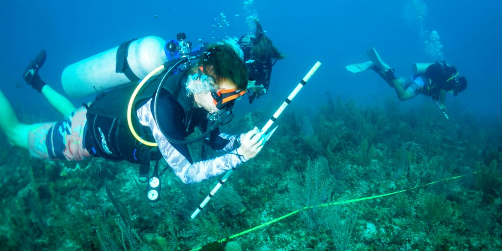 GVI participants monitor coral reefs while taking part in gap year travel.