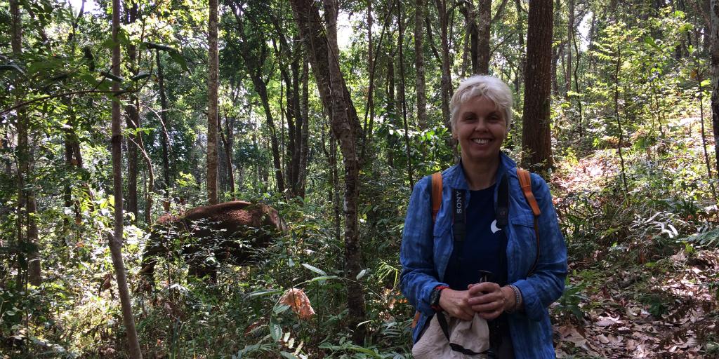 Taking a career break? This volunteer is taking her career break with elephants in Chiang Mai.