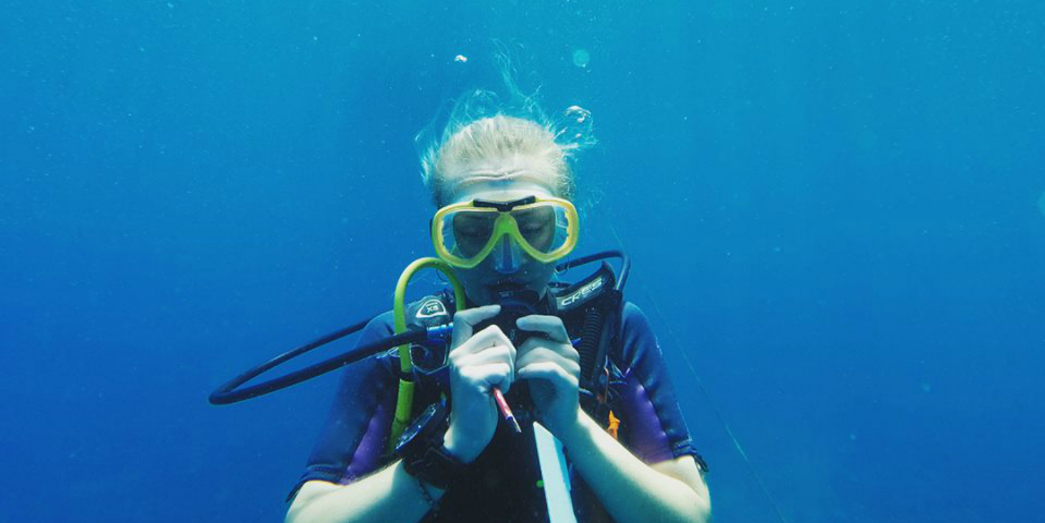 A diver practises equalising during one of their scuba diving adventures.