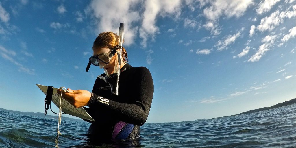 data collection and strategic planning in our Fiji marine conservation programs help move towards our short and long term goals.