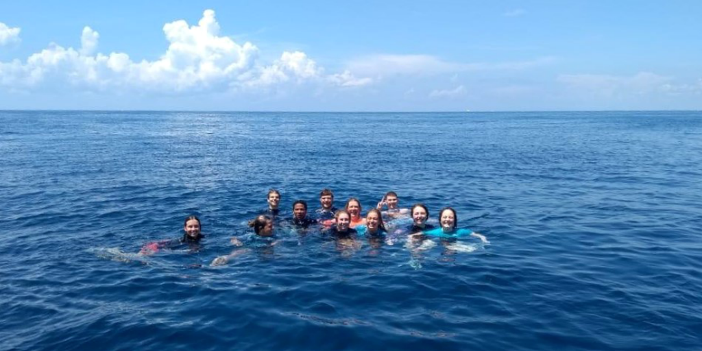 Volunteer in Mexico and jump in to the sea