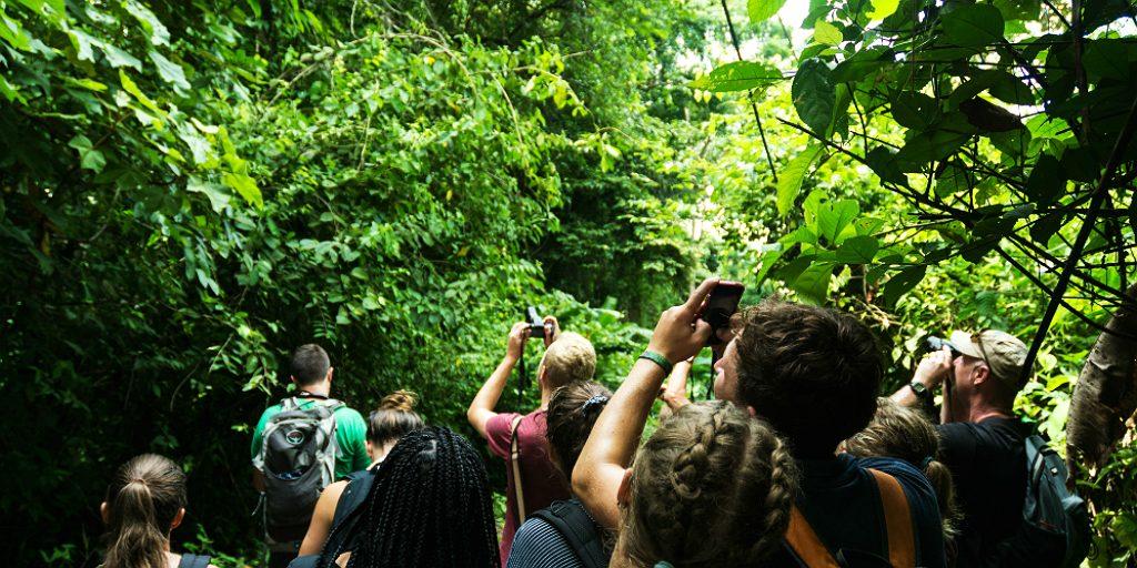 gvi volunteers observing nature