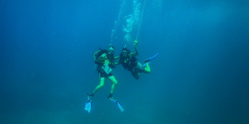 Take part in padi certification dive training with your friends and family