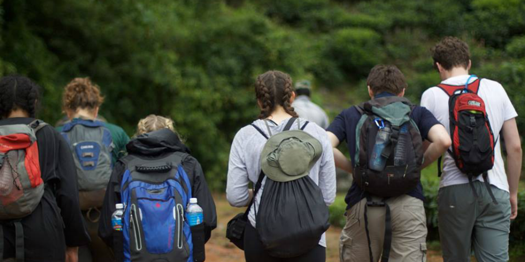Volunteers wearing hiking gear and walking into a forest.