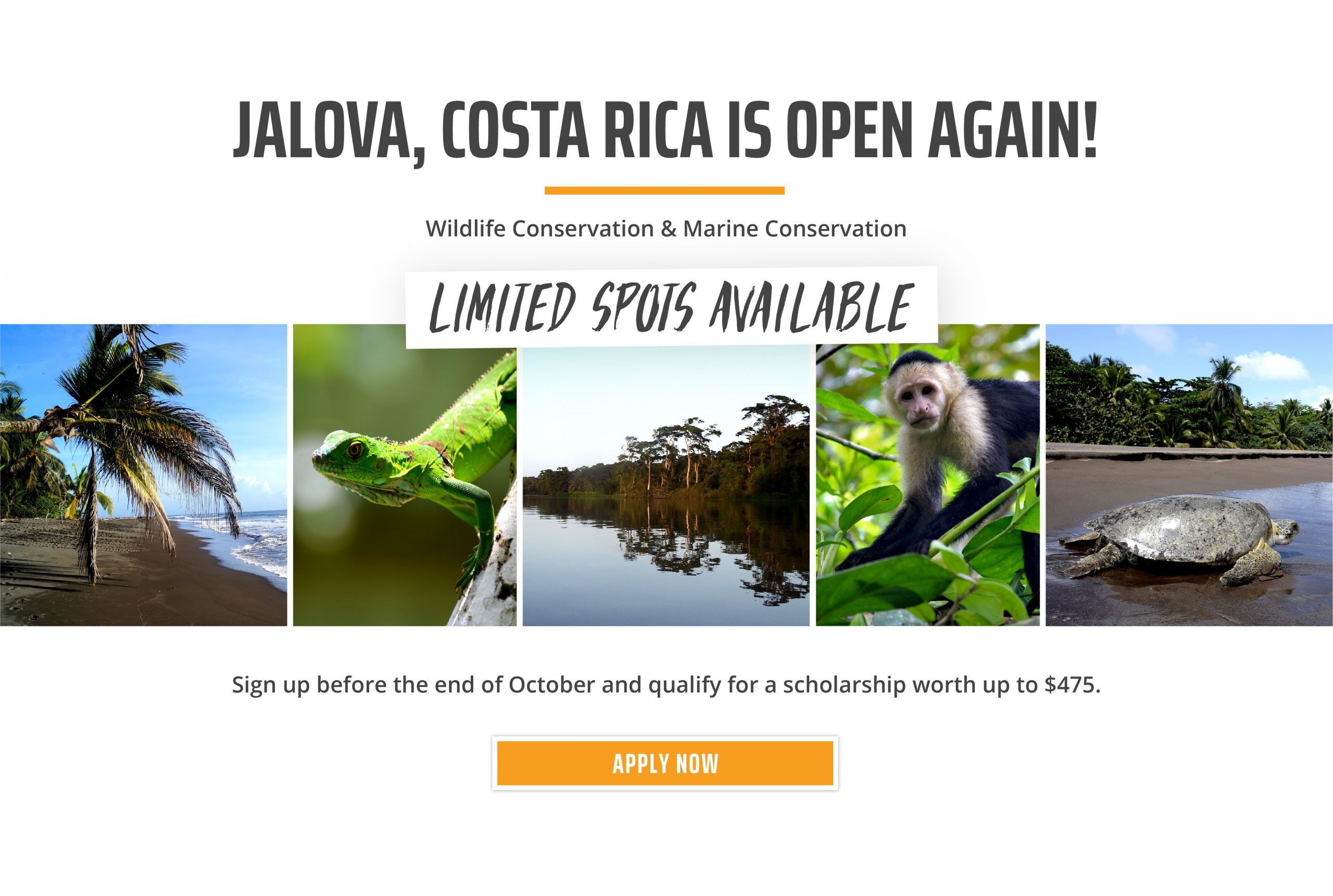 USA Costa Rica Reopening