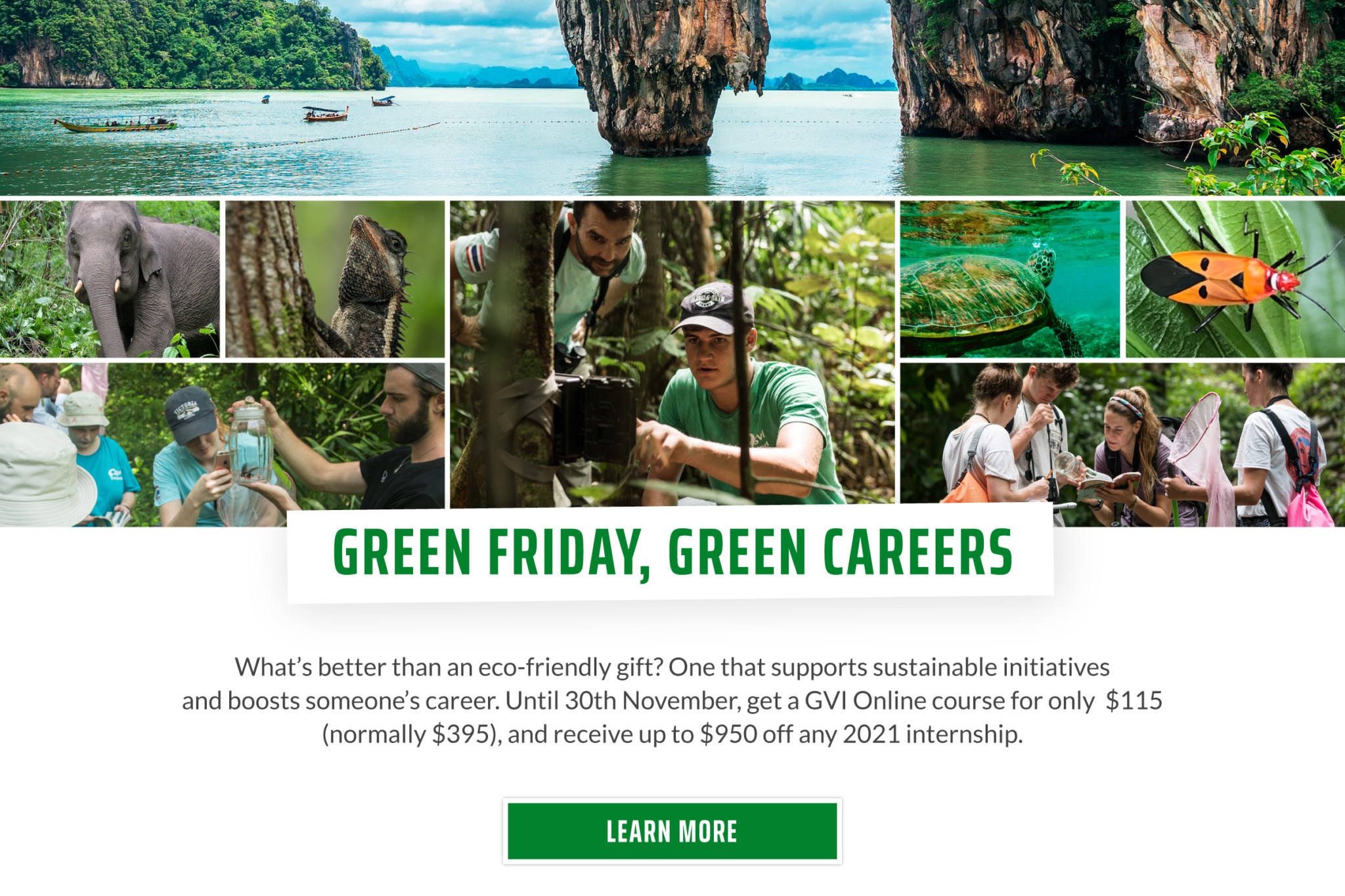 US Dollar Green Nov20 Scholarship