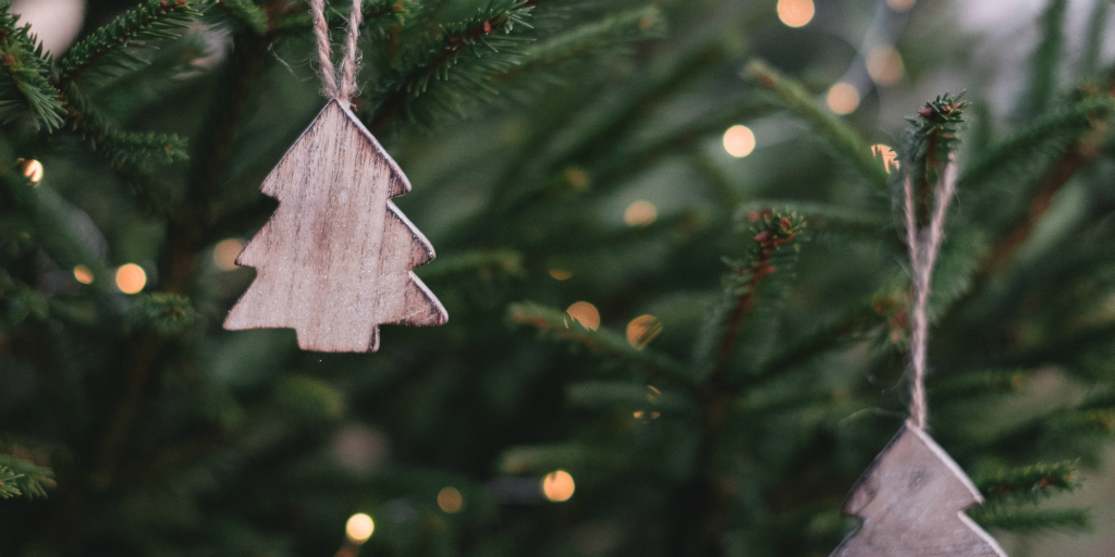 Have a more eco friendly christmas by renting a christmas tree