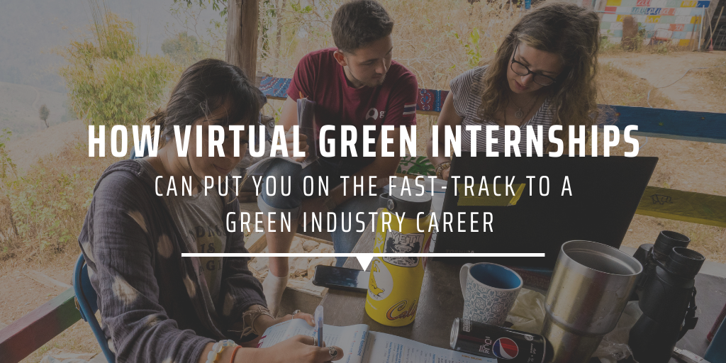 How virtual green internships can put you on the fast-track to a green industry career