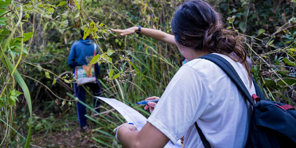 a volunteer kickstarts her green career with GVI with a green internship