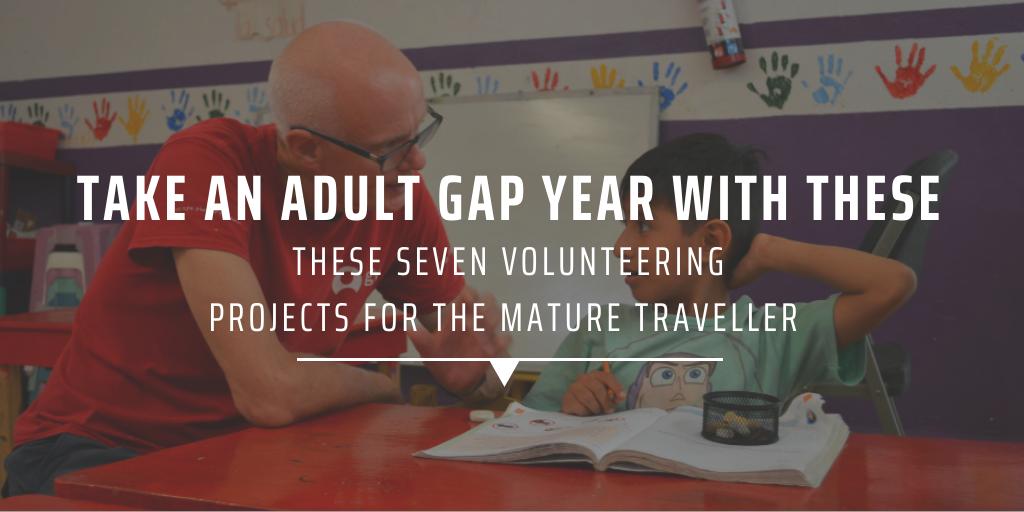 Adult gap year